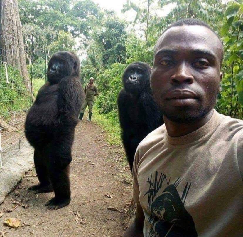Garde forestier du parc des Virunga